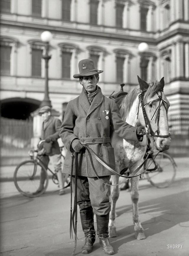 Red Fox 1915