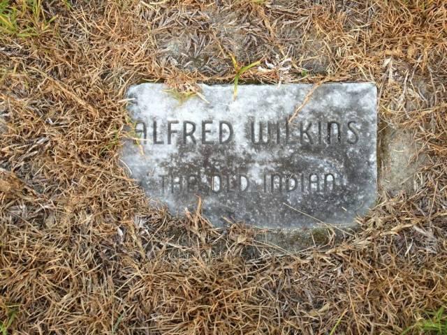 Alfred Wilkins